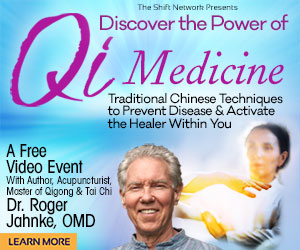 The Power of Qi Medicine - Traditional Chinese Techniques to Prevent Disease & Activate the Healer Within You